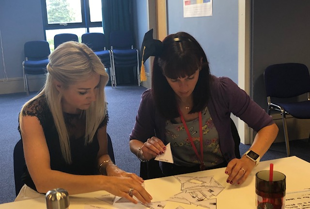 INSET Professional Learning